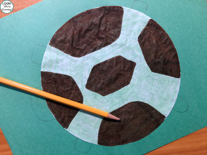 Simple Turtle Craft for Young Kids