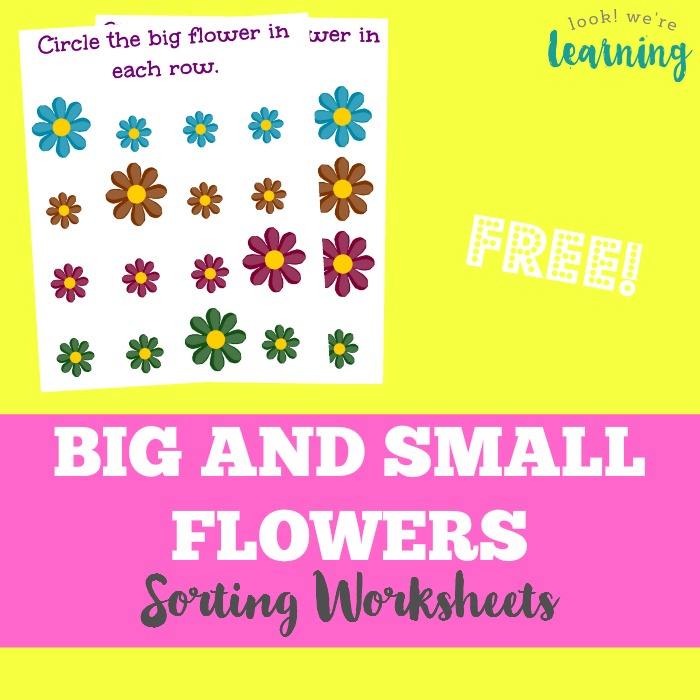 Spring Worksheets for Kids - Flowers Big and Small Sorting Worksheets