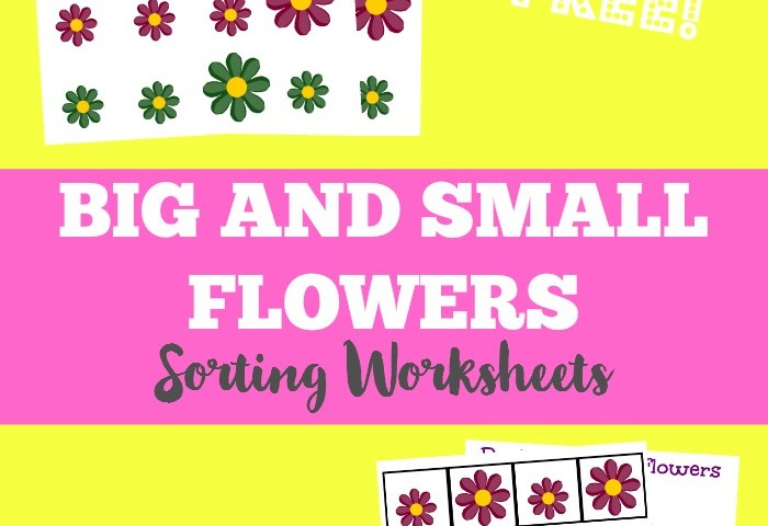 Spring Worksheets for Kids: Flower Size Sorting Printables