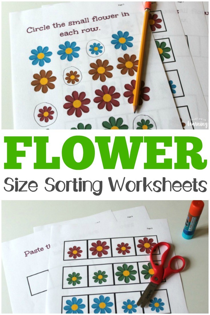 Flower Size Sorting Printables - Look! We\'re Learning!