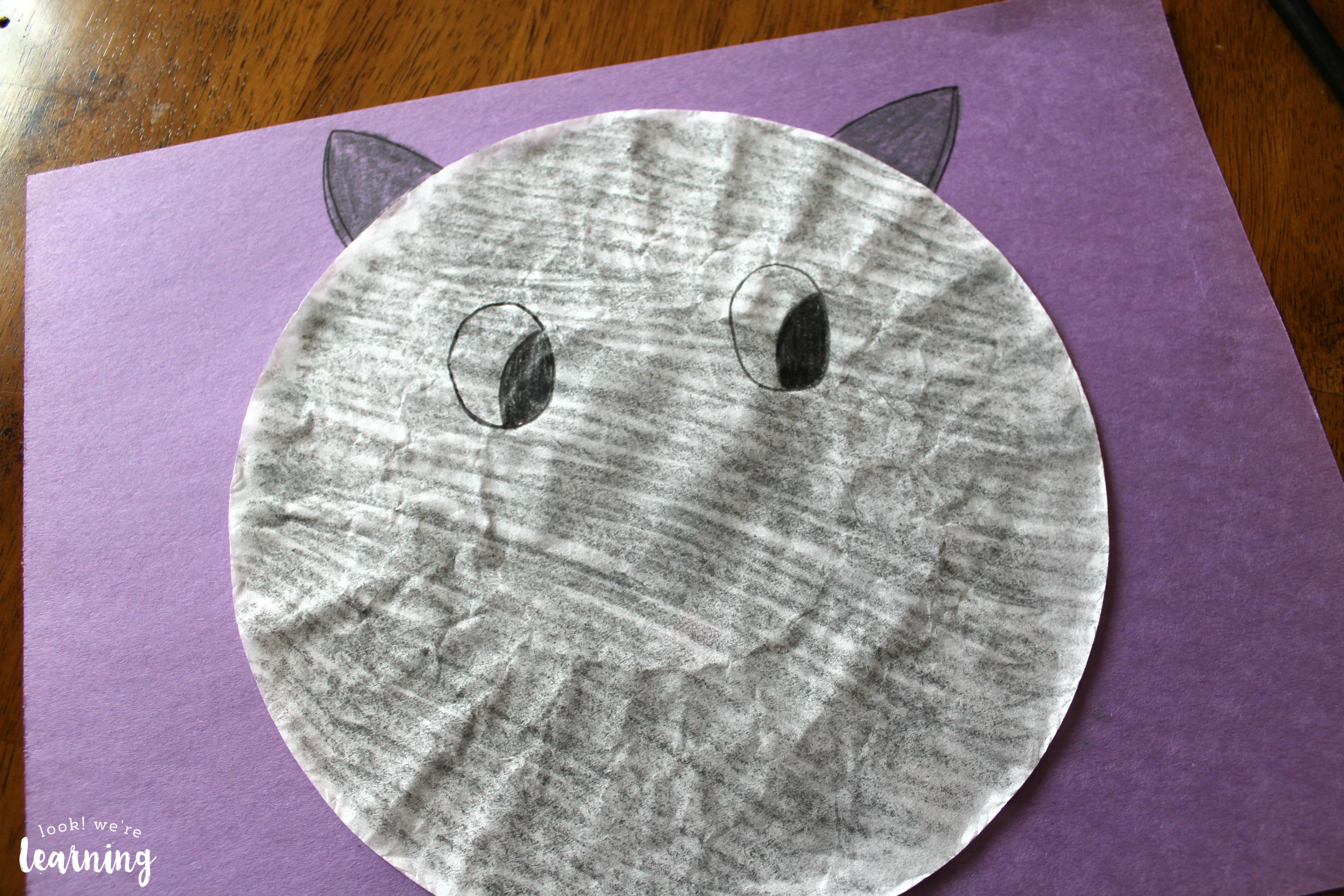 Making a Coffee Filter Cat Craft