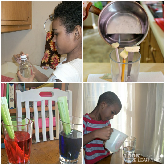15 Minute Science Experiments for Kids