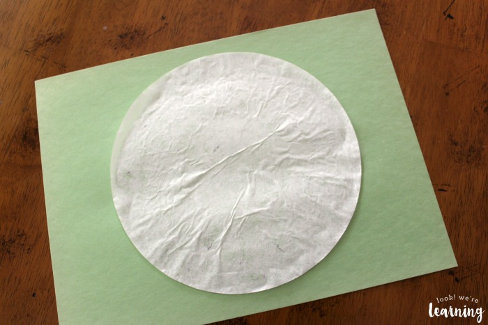 Easy Coffee Filter Baseball Craft