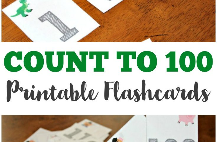 Printable Counting to 100 Flashcards
