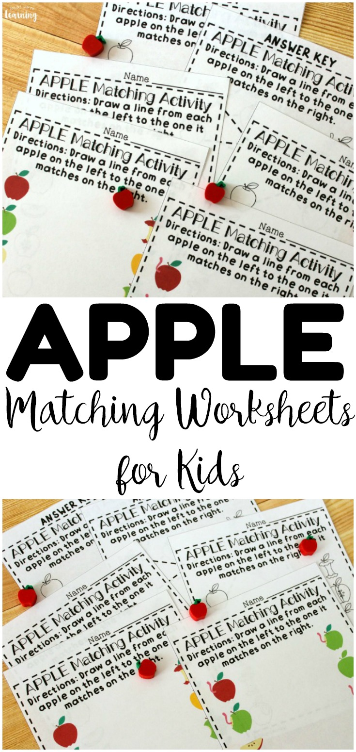 Teach early learners how to recognize same and different objects with these fun apple matching worksheets for preschool! Perfect for fall morning tubs and centers!