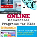 Want to enrich your child's education? Try one of these online supplemental homeschool programs this year!