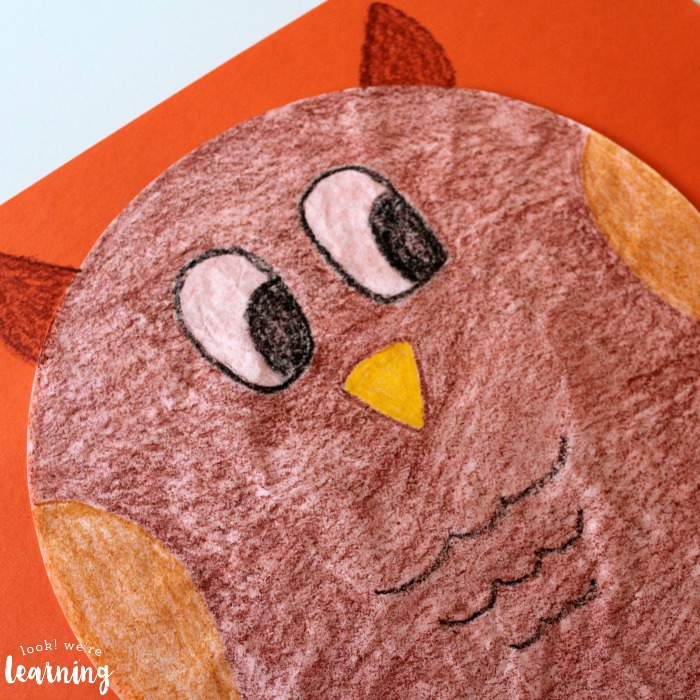 Cute Owl Craft for Kids