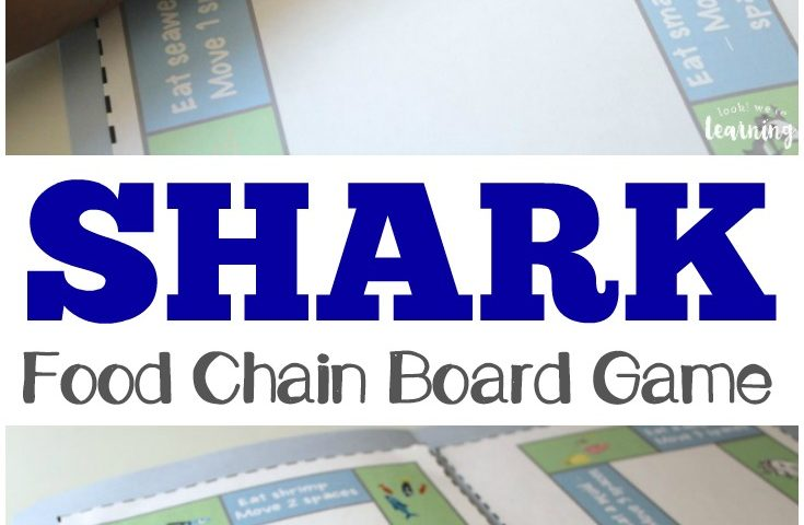 Sharks! – A Shark Food Chain Game
