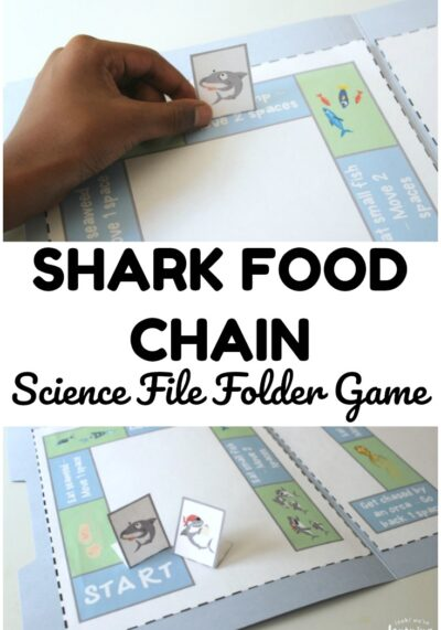 Learn about what sharks eat to live in this fun shark food chain file folder game!