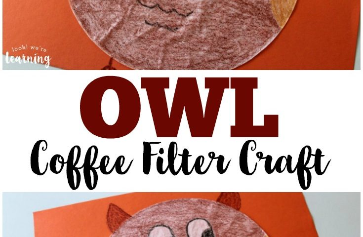 Coffee Filter Crafts for Kids: Coffee Filter Owl Craft