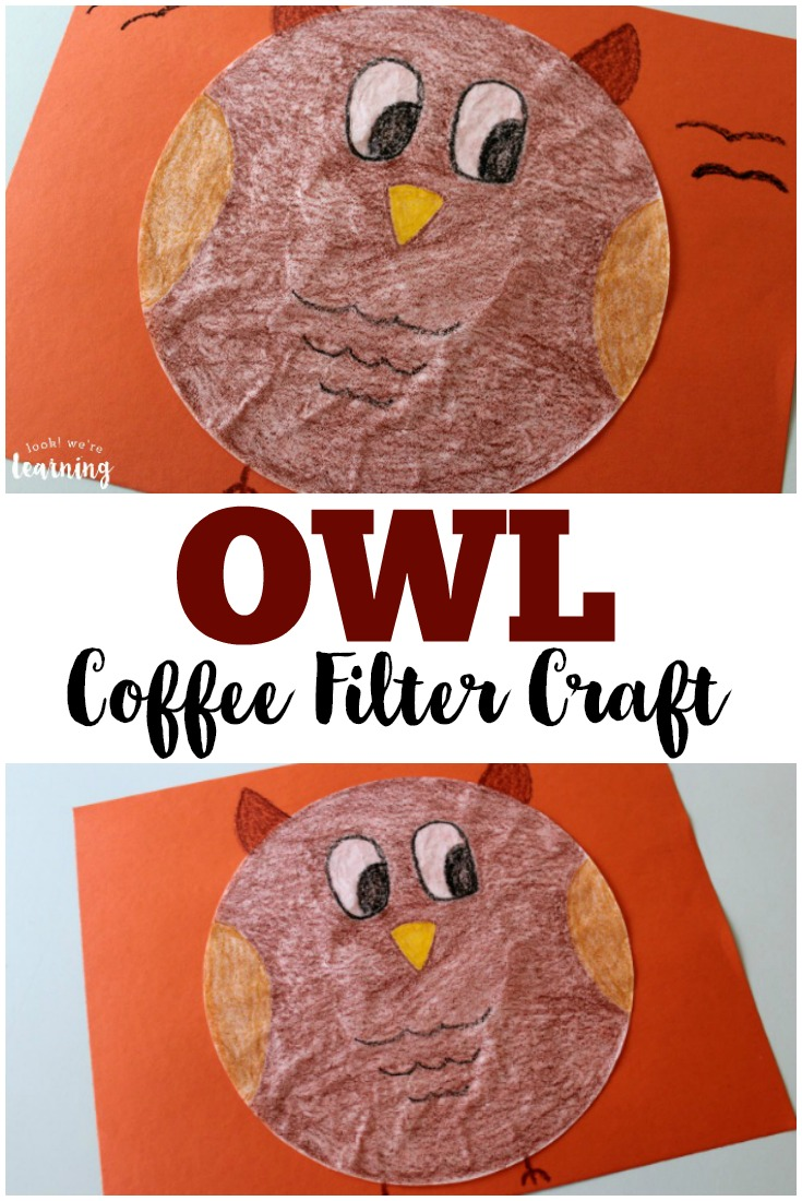 crafts with coffee filters owl books for look we re learning 4155