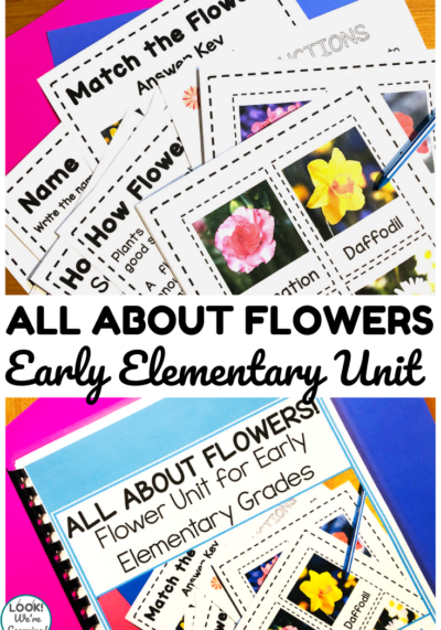 All About Flowers Early Elementary Unit