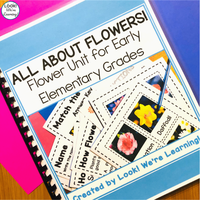 Early Elementary Unit about Flowers