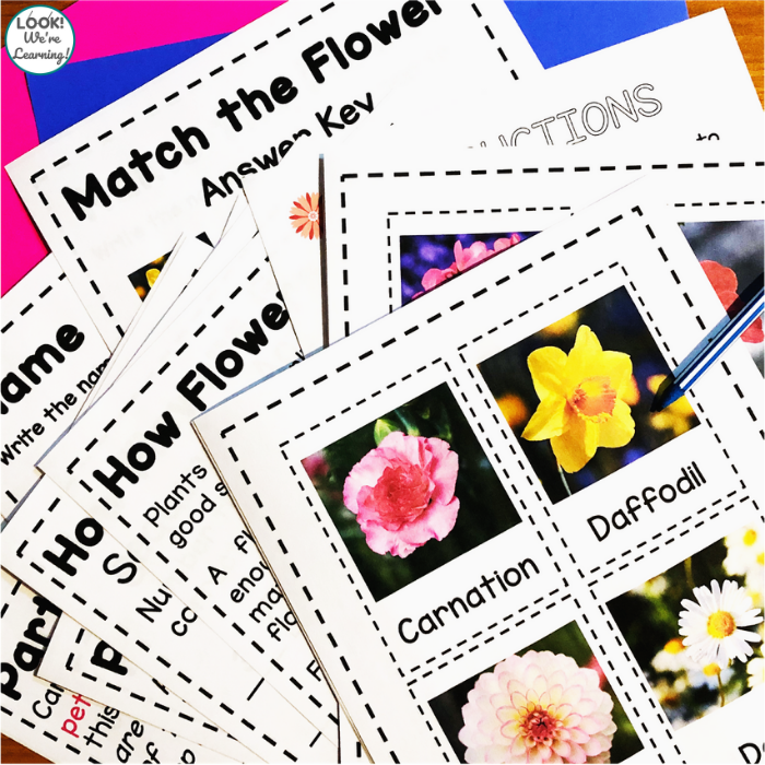Flower Printables Set for Early Grades