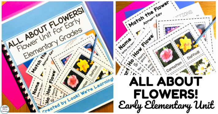 Flower Theme Unit for Early Grades