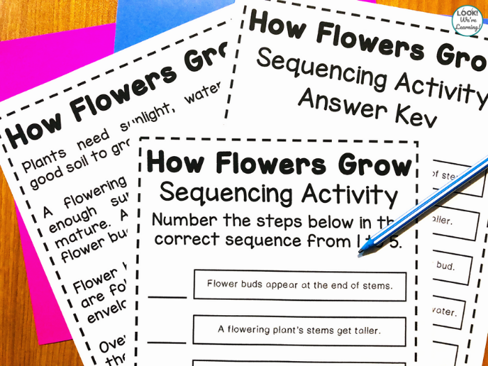 How Flowers Grow Printable Activity