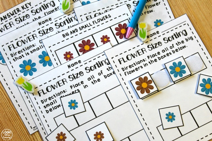 Big and Small Flower Sorting Activity