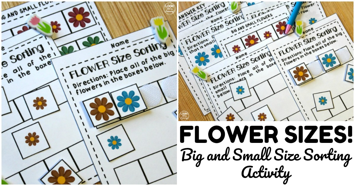 Fun Flower Size Sorting Activity for Early Grades