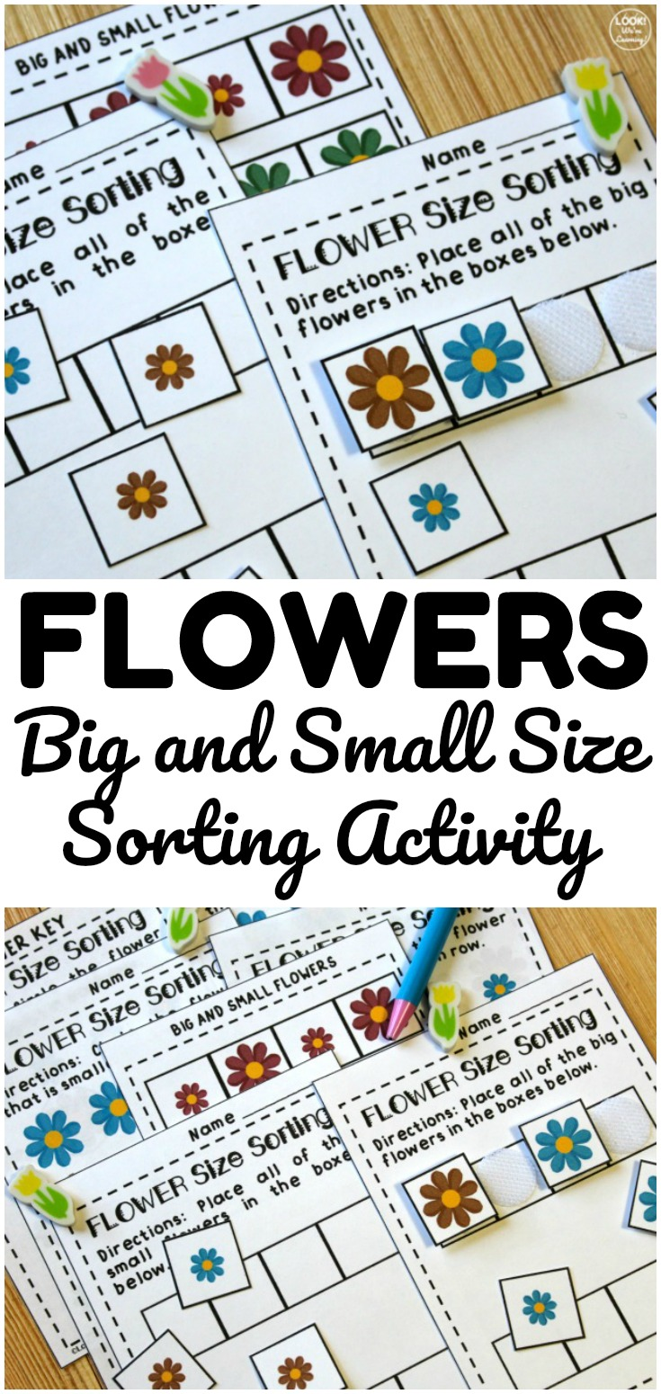 Practice sorting big and small objects with this spring flower size sorting activity! Great for early grade morning tubs and centers!