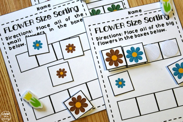 Printable Flower Size Sorting Activity for Early Grades