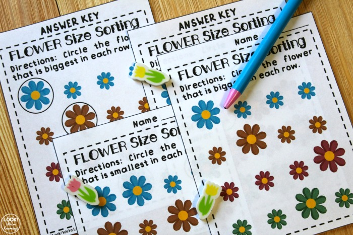 Spring Size Sorting Activity for Early Grades