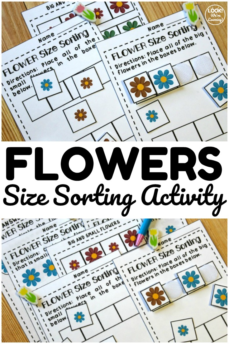 This spring flower themed size sorting activity is so much fun for early learners! Students can use it to practice separating big and small flowers during spring!
