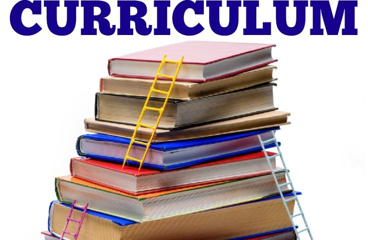 What to Do When You Have Too Much Homeschool Curriculum