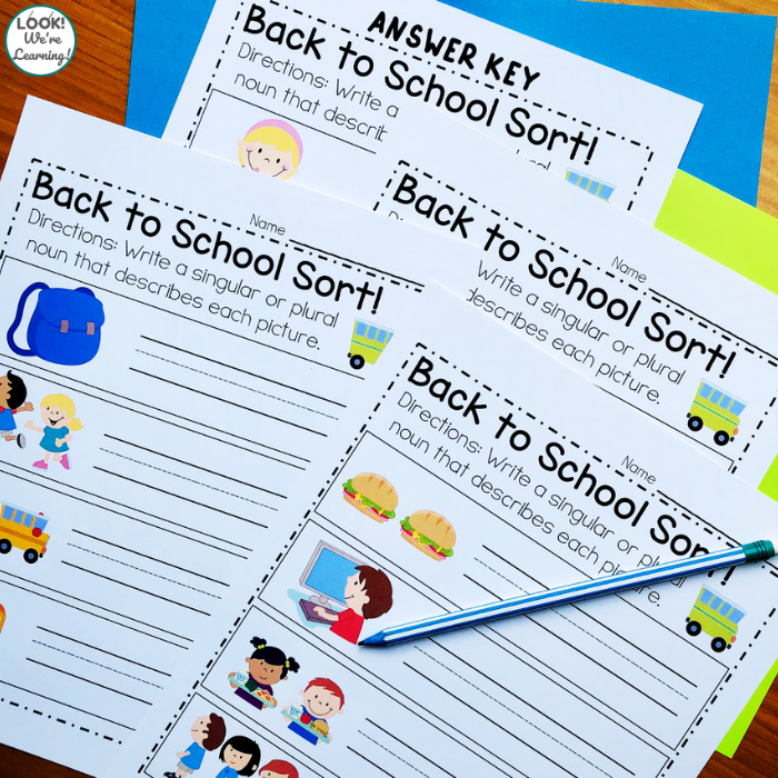 Singular and Plural Noun Practice for Second Grade