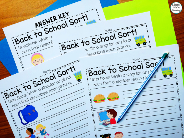 Singular and Plural Noun Sorting Activity for Kids