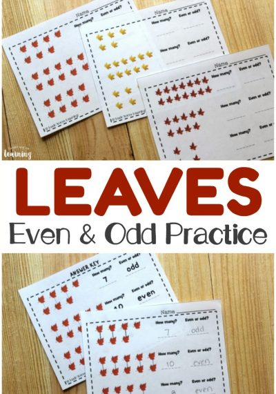 Work on recognizing even and odd numbers with your students using these Fall Leaf Even and Odd Practice printables!