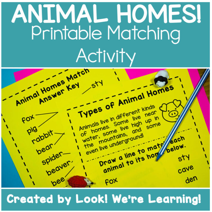 Animal Homes Unit Activity