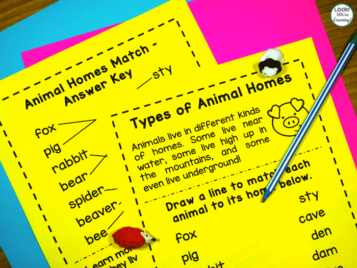 Animal Homes Worksheet