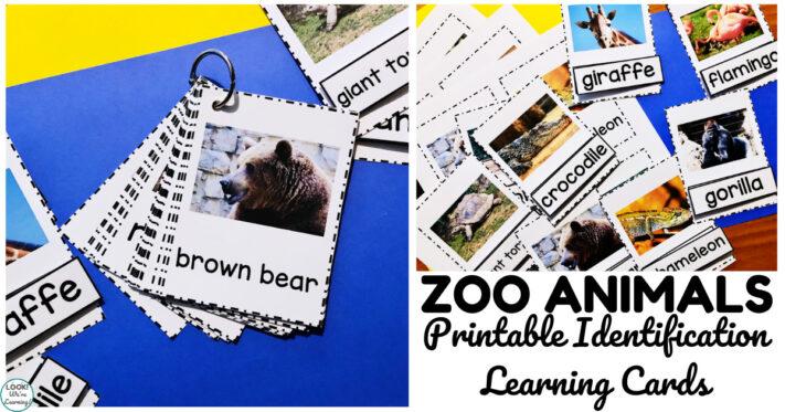 Fun Zoo Animal Printable Naming Cards