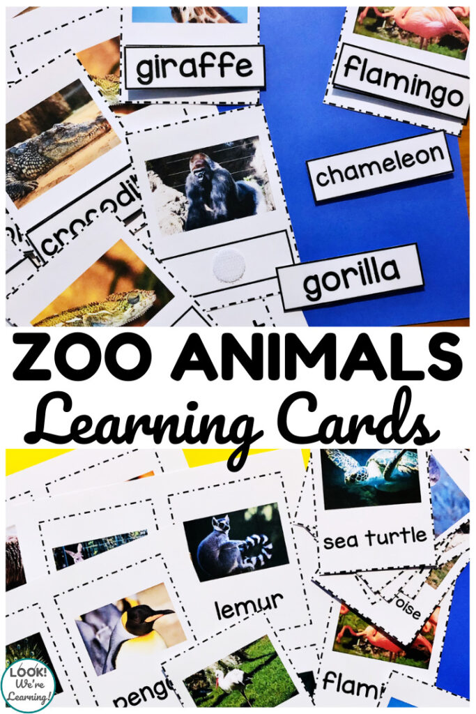 Help early learners recognize animals with these printable zoo animal flashcards!