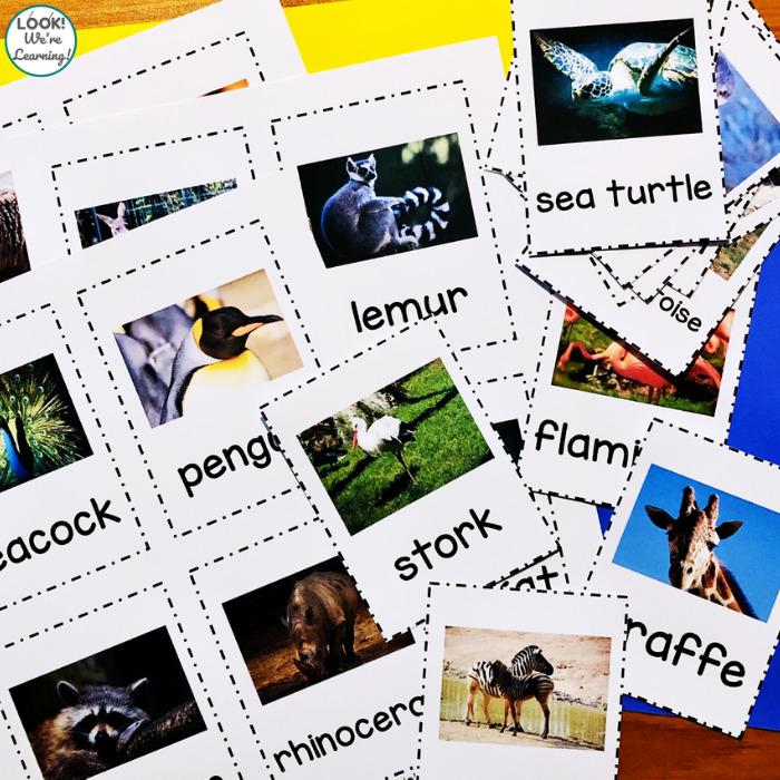 Printable Zoo Animal Flashcards for Preschool