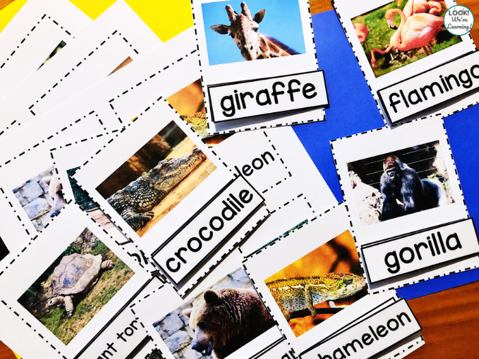 Printable Zoo Animal Naming Cards for Kids