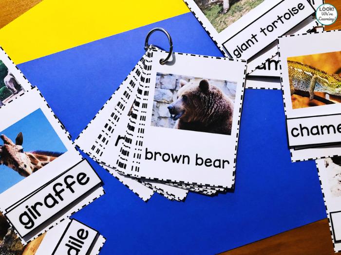 Printable Zoo Animal Naming Cards