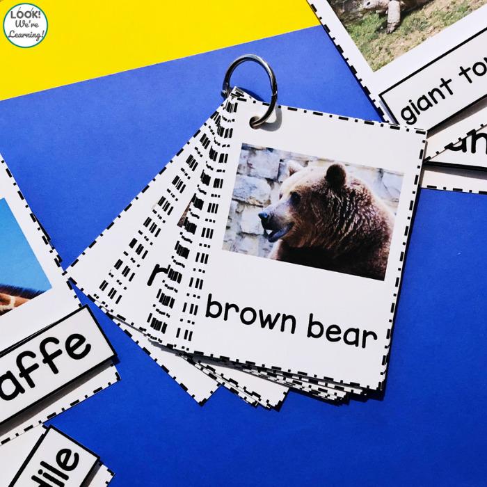 Zoo Animal Identification Cards