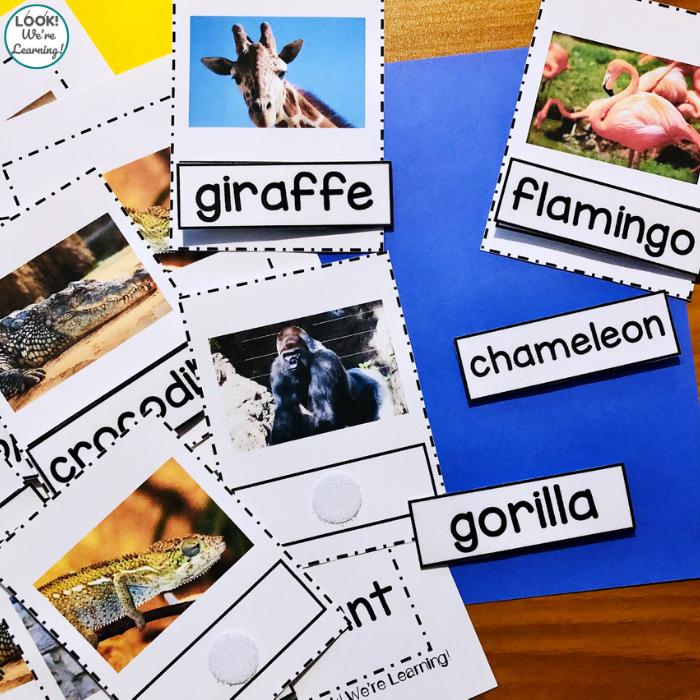 Zoo Animal Naming Activity for Preschool