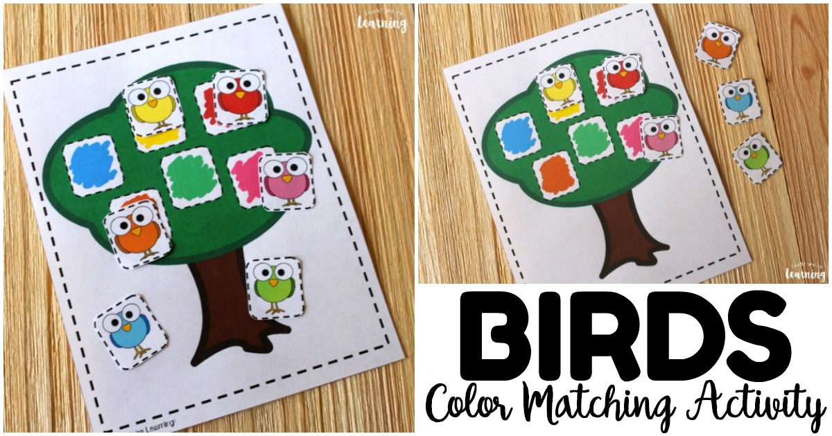 Easy and Fun Color Matching Activity for Kids