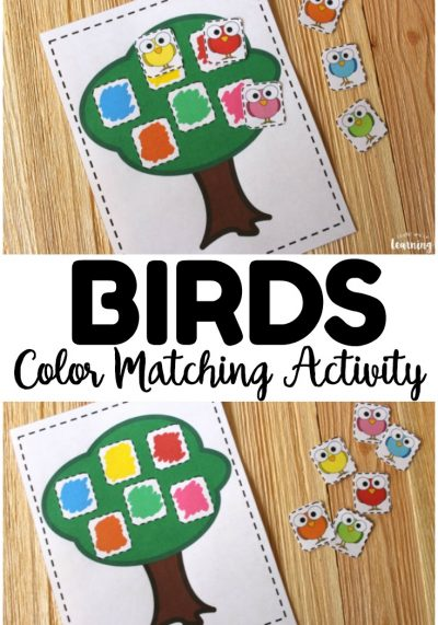 Work on color recognition with this cute bird-themed color matching activity for kids! So simple for an early learning activity!