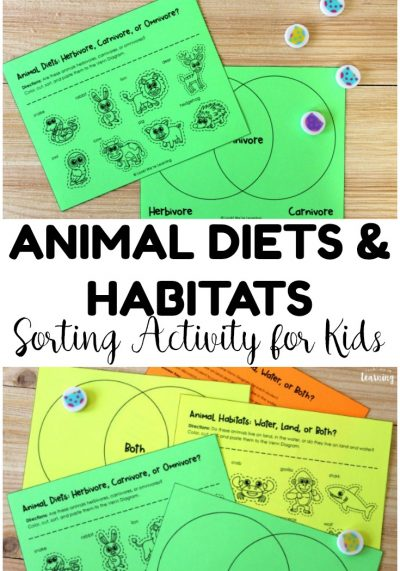 Animal Diagram! Habitat and Diet Animal Sorting Activity