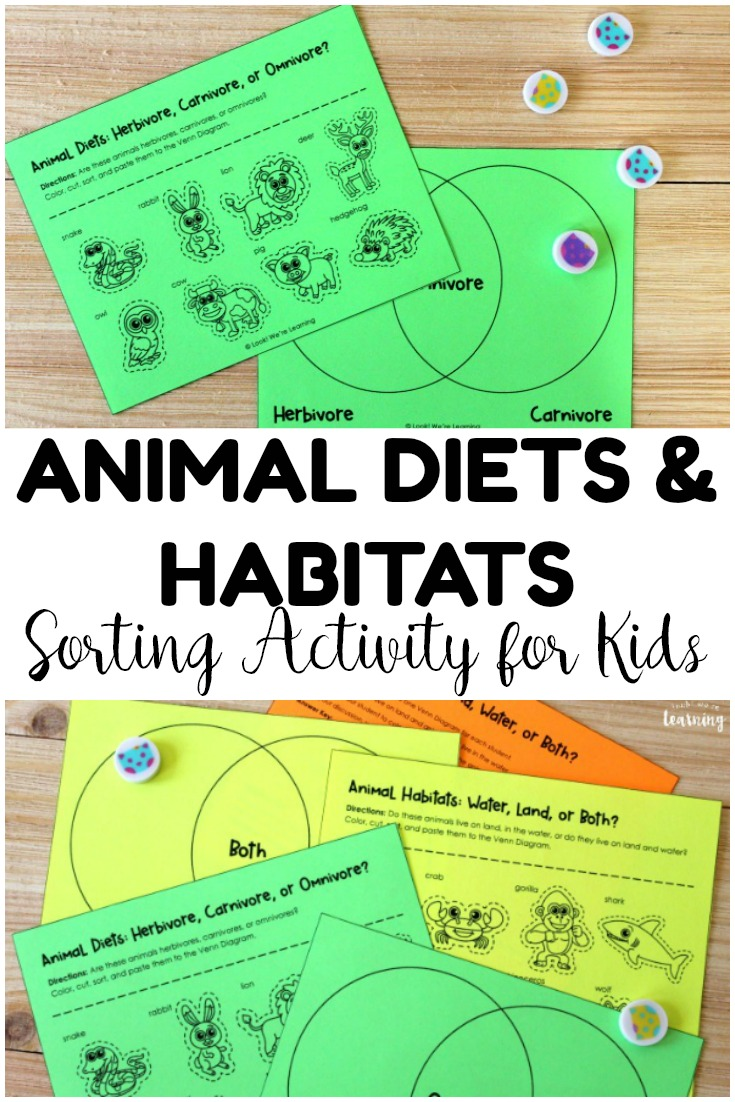 Teach students about animals with this animal diets and habitats sorting activity! Such an easy way to learn about animal science with young learners!