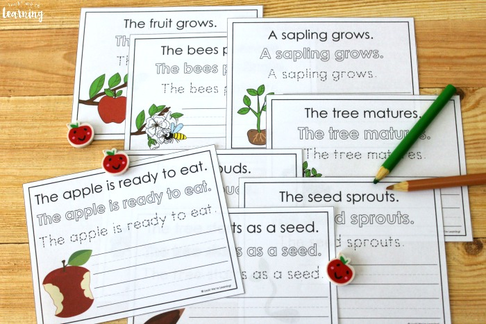 Apple Tree Life Cycle Sentence Writing Activity for Kids
