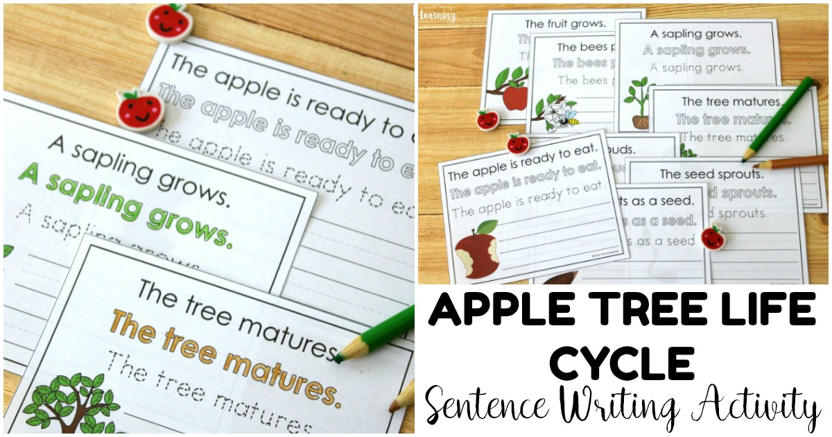 Fun Apple Tree Life Cycle Sentence Writing Activity