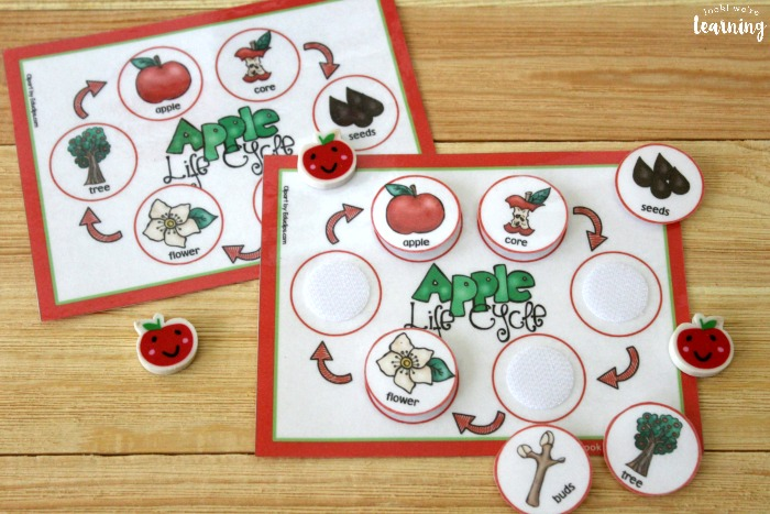 Printable Apple Life Cycle Sequencing Mat for Kids