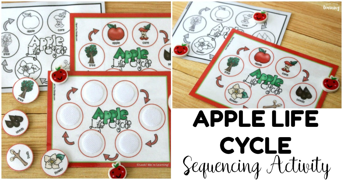 Simple Apple Life Cycle Sequencing Activity for Kids