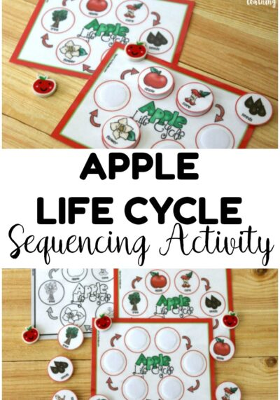 This printable apple life cycle sequencing activity is perfect for helping students learn how apples grow! Use it at science centers or in morning tubs!