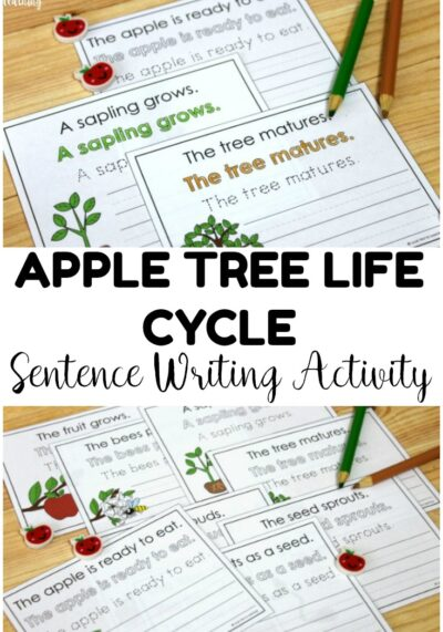 This printable apple tree life cycle is perfect for fall science and ELA practice! Add it to writing centers or science centers!