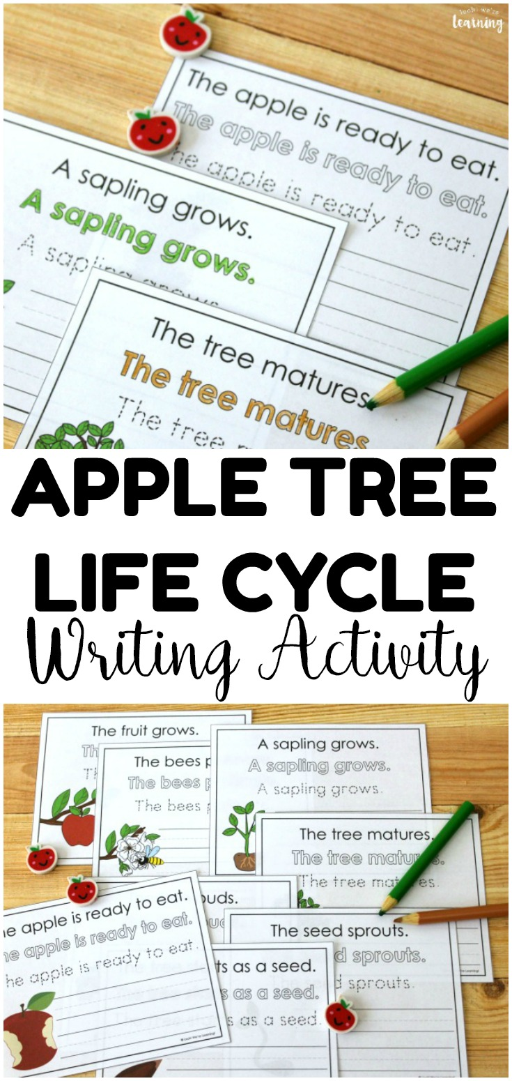 This printable apple tree life cycle sentence writing activity is such an easy to teach fall science and ELA at the same time!